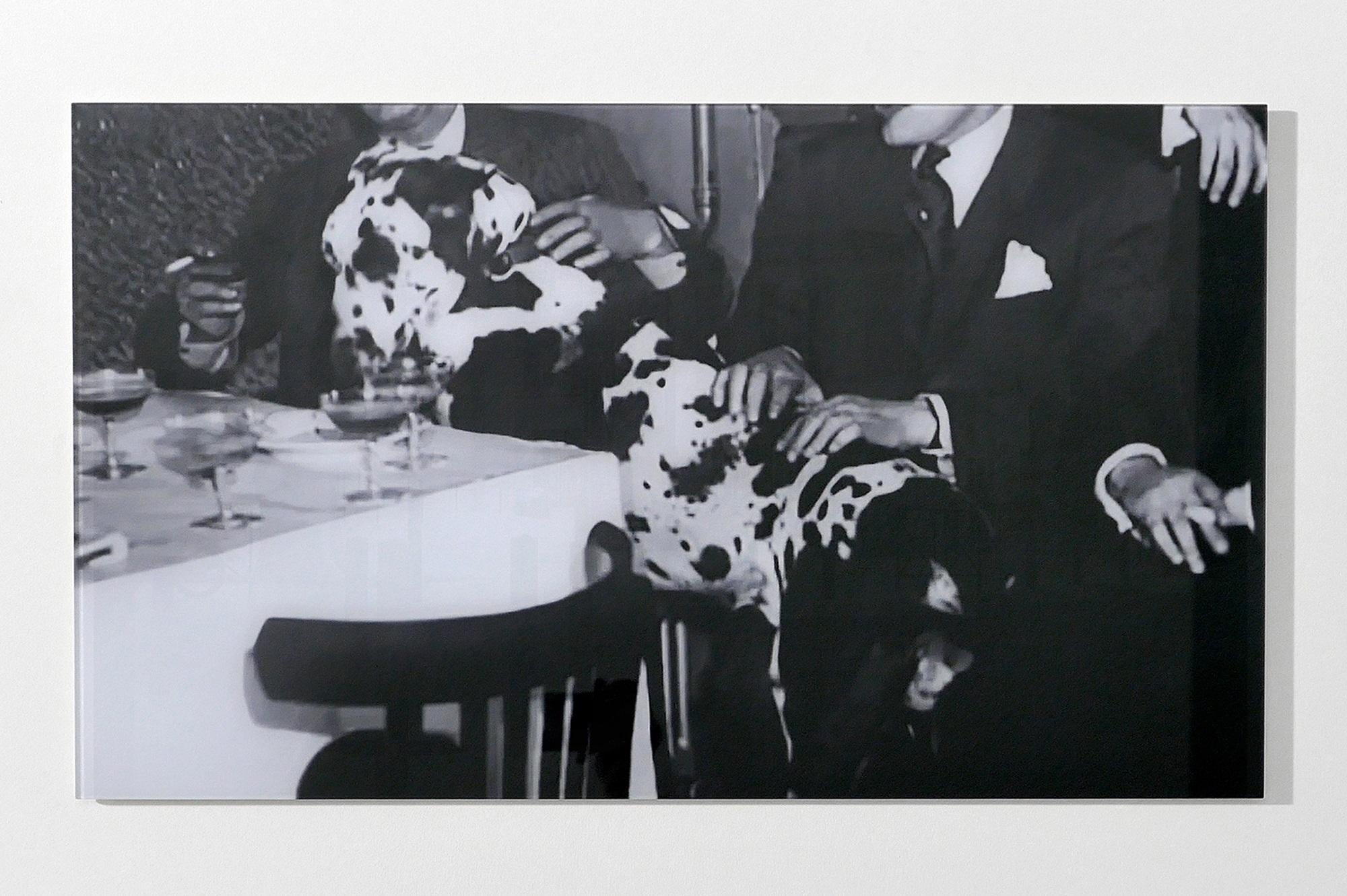 Dalmatien, 2018 - Marie Angeletti